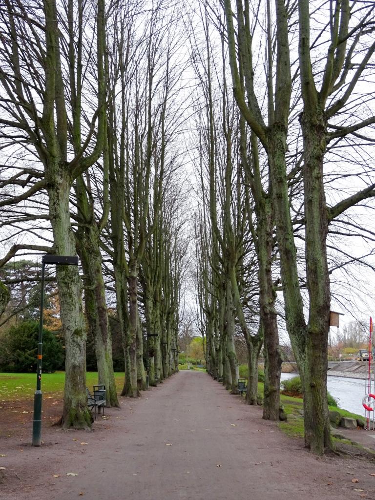 One of the many parks of Copenhagen